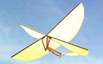Nathan Chronister's scissor-wing design formed the basis for several radio-controlled toys, and the hoverable micro air vehicles that were soon developed at various universities.